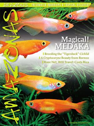 Amazonas Magazine 2016.09-10.