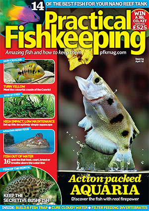 Practical Fishkeeping 2016.04