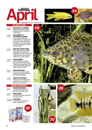 Practical Fishkeeping 2016.04 Inside