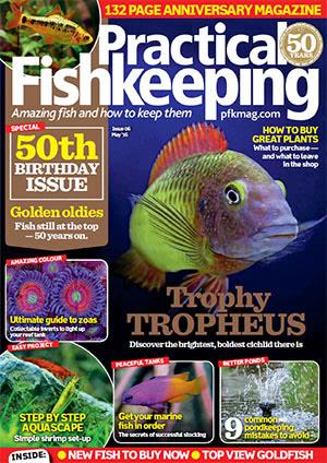 Practical Fishkeeping 2016.05
