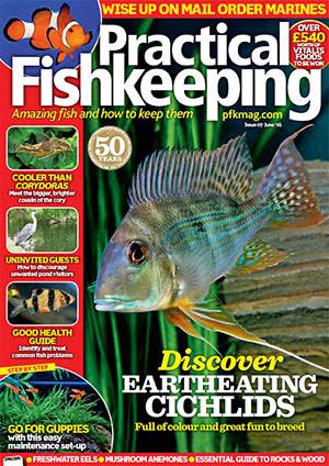 Practical Fishkeeping 2016.06.