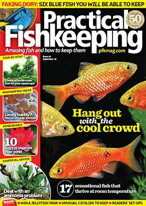 Practical Fishkeeping 2016.09