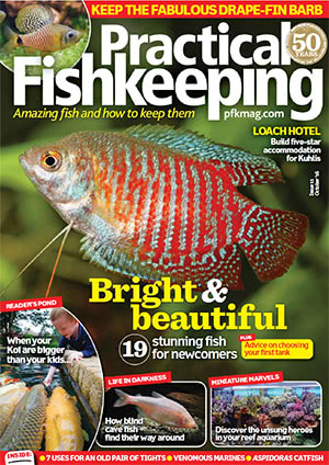Practical Fishkeeping 2016.10