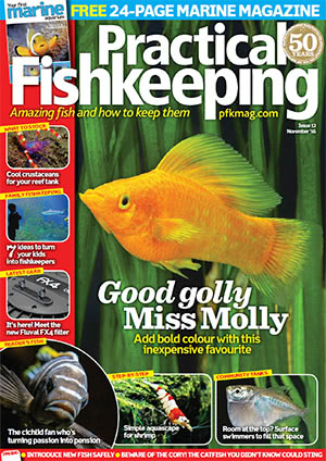 Practical Fishkeeping 2016.11