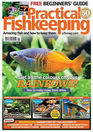 Practical Fishkeeping 2017.01