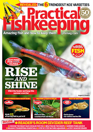 Practical Fishkeeping 2017.08