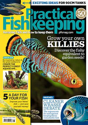 Practical Fishkeeping 2017.09