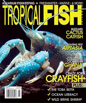 Tropical Fish Hobbyist 2015.08. #713