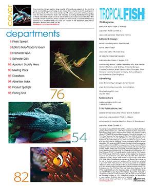 Tropical Fish Hobbyist