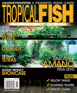 Tropical Fish Hobbyist 2015.11-12. #715