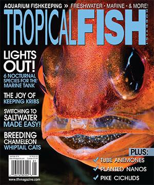 Tropical Fish Hobbyist 2016.01-02. #716