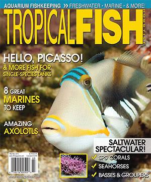 Tropical Fish Hobbyist 2016.03-04. #717