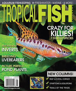 Tropical Fish Hobbyist 2016.05-06. #718
