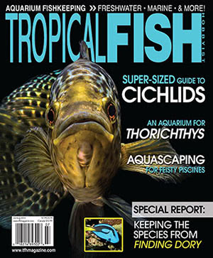 Tropical Fish Hobbyist 2016.07-08. #719