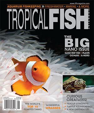 Tropical Fish Hobbyist 2017.01-02. #722