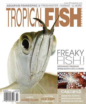 Tropical Fish Hobbyist 2017.03-04. #723