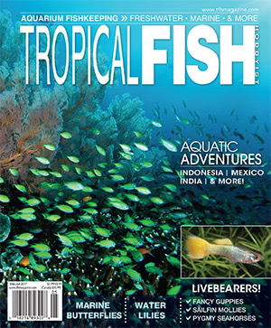 Tropical Fish Hobbyist 2017.05-06. #723