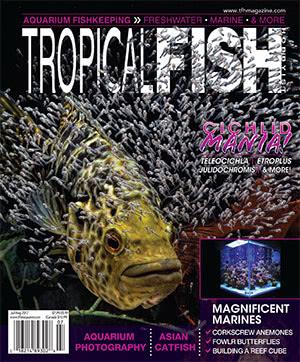 Tropical Fish Hobbyist 2017.07-08. #724
