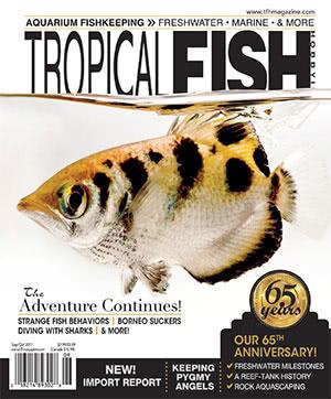 Tropical Fish Hobbyist 2017.09-10. #725