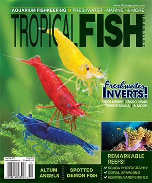 Tropical Fish Hobbyist 2017.11-12 #727