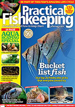 Practical Fishkeeping 2016.12