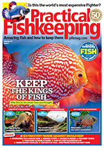 Practical Fishkeeping 2017.02