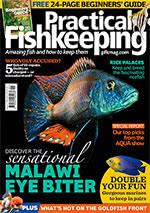 Practical Fishkeeping 2018.01