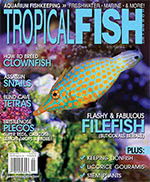 Tropical Fish Hobbyist 2015.09-10. #714