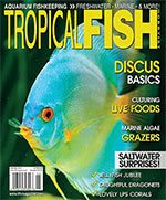 Tropical Fish Hobbyist 2016.11-12. #721