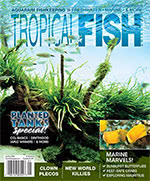 Tropical Fish Hobbyist 2018.01-02 #728